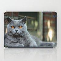 Diesel the cat ! iPad Case
