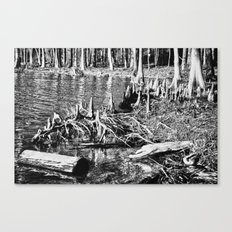 On the Bayou. Canvas Print