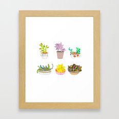 Succulents  Framed Art Print