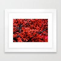 Festive Berries 1 Framed Art Print