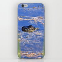 Alligator iPhone & iPod Skin