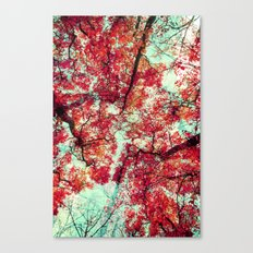 Candied Fall Canvas Print