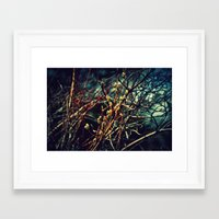Spring Budding Framed Art Print