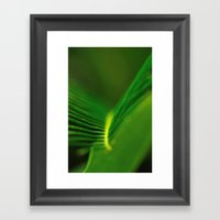 Fern Lines Framed Art Print