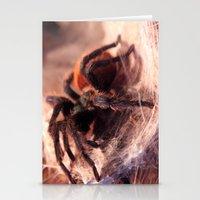 Tarantula Stationery Cards