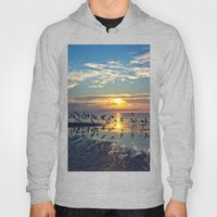 Morning Birds Hoody