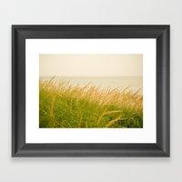 Dune Grass At Dusk Framed Art Print