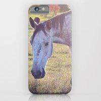Star Horse iPhone 6 Slim Case
