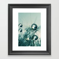 One Seed With Blue Drops Framed Art Print