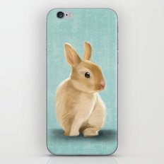 Portrait of a little bunny iPhone & iPod Skin