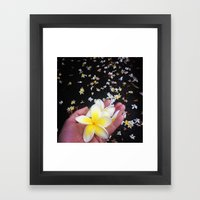 Frangipani Explosion! Framed Art Print