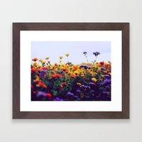 flower field II Framed Art Print