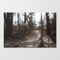 Afternon Light Canvas Print