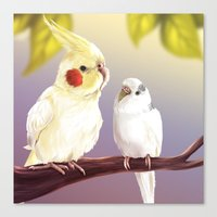 Budgie And Cockatiel Canvas Print