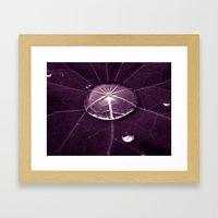 purple water drop XVI Framed Art Print