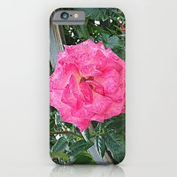 iPhone & iPod Case featuring rosa rosa by Giorgia Giorgi