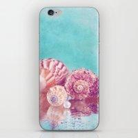 Seashell Group iPhone & iPod Skin