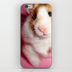 Pixi the Hamster: Love Edition iPhone & iPod Skin