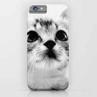Sweet Kitten iPhone 6 Slim Case