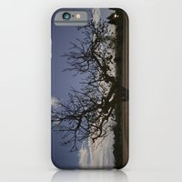 iPhone & iPod Case featuring Ficus Carica by rubio700