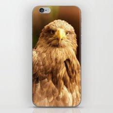Predator, Eagle iPhone & iPod Skin