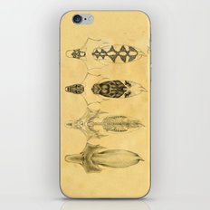 Aquilapes X-Ray iPhone & iPod Skin