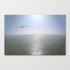 In Flight Canvas Print