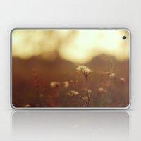 Peaceful Laptop & iPad Skin