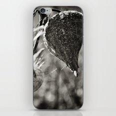 Milkweed 2 iPhone & iPod Skin