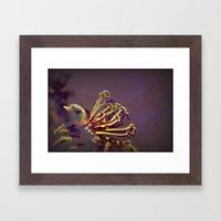 Pistils Framed Art Print