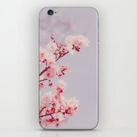 Cotton Candy Dream iPhone & iPod Skin