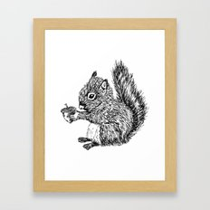 Squirrel in black & white Framed Art Print