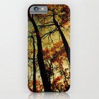 Fall Sunset Trees iPhone 6 Slim Case