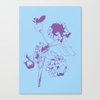 Hydranga - Purple On Blu… Canvas Print