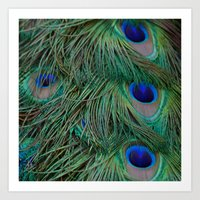 Tail feathers Art Print