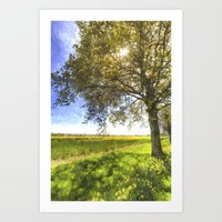 The Daffodil Summer Farm Art Art Print