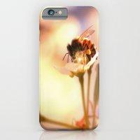 Honey Herder iPhone 6 Slim Case