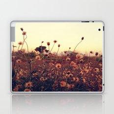 Desert Dandelion Laptop & iPad Skin