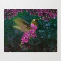 If a hummingbird became a hydrangea Canvas Print