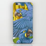 Hyacinth Macaws And Bana… iPhone & iPod Skin