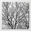 one winterday II Canvas Print