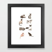 For cat lovers - watercolor of different cat breeds Framed Art Print