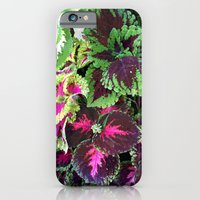 Tropical Forest iPhone 6 Slim Case