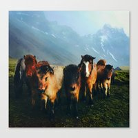 The Friends We Made In Iceland Canvas Print