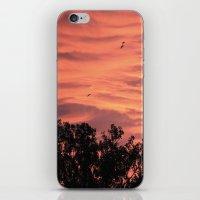 Burning Sunrise iPhone & iPod Skin