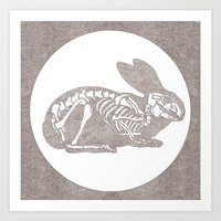 In Which A Rabbits Anato… Art Print