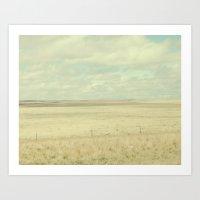 Open Fields Art Print