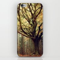 Hêtre de Ponthus 02 - Legendary Trees of Brocéliande iPhone & iPod Skin