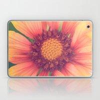 Pink and Orange Laptop & iPad Skin