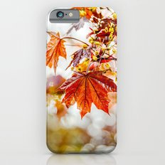 Maple Blossom  iPhone 6 Slim Case